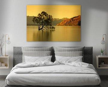 Le lac Wanaka au lever du soleil, Nouvelle-Zélande sur Markus Lange