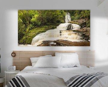 McLean Falls Waterval, The Catlins, Nieuw-Zeeland van Markus Lange