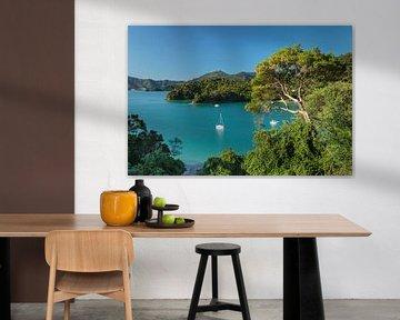 Kenepuru Sound, Nieuw-Zeeland van Markus Lange