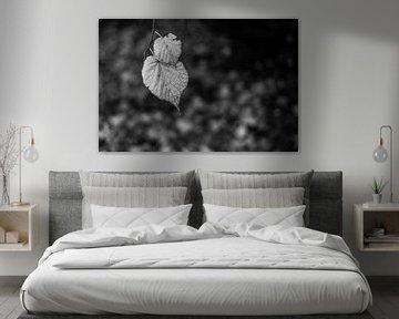 Herfstblaadjes in monochroom van Timo Bergenhenegouwen