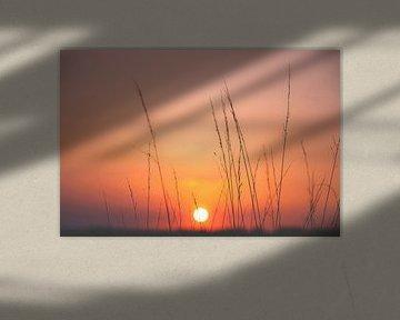 Zonsondergang van Nicky Kapel