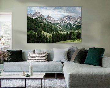Les Alpes en Autriche sur Patrycja Polechonska
