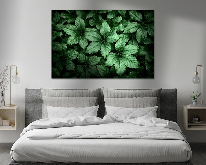 Beispiel: Hübsche Blätter von Halma Fotografie