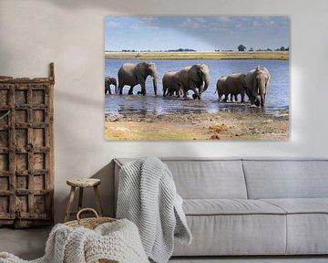 Kudde olifanten van GoWildGoNaturepictures
