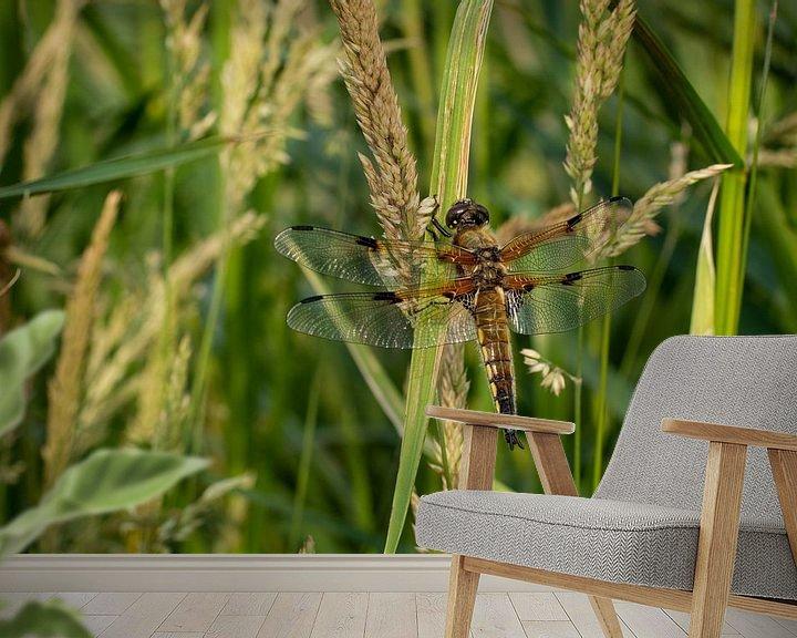Sfeerimpressie behang: Libelle in rust van Rianne Fotografeert