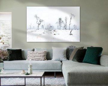 sneeuwlandschap van Alain Deflou