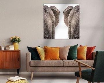 Elefanten von Hennie Zeij