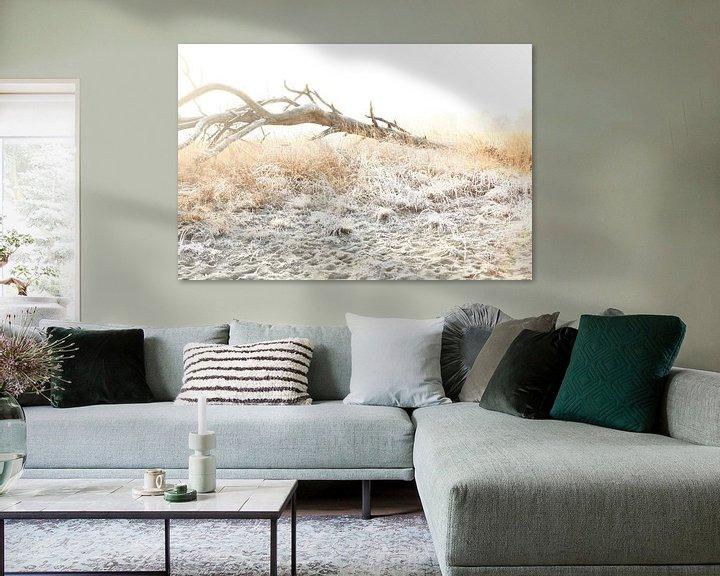 Sfeerimpressie: Winter in de Loonse en Drunense duinen! van Diana van Geel