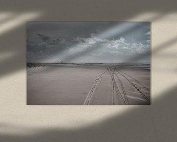 Vliehors 2 van Nils Bakker