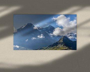 Jungfrau, Jungfraujoch Top of Europa van Edwin Kooren