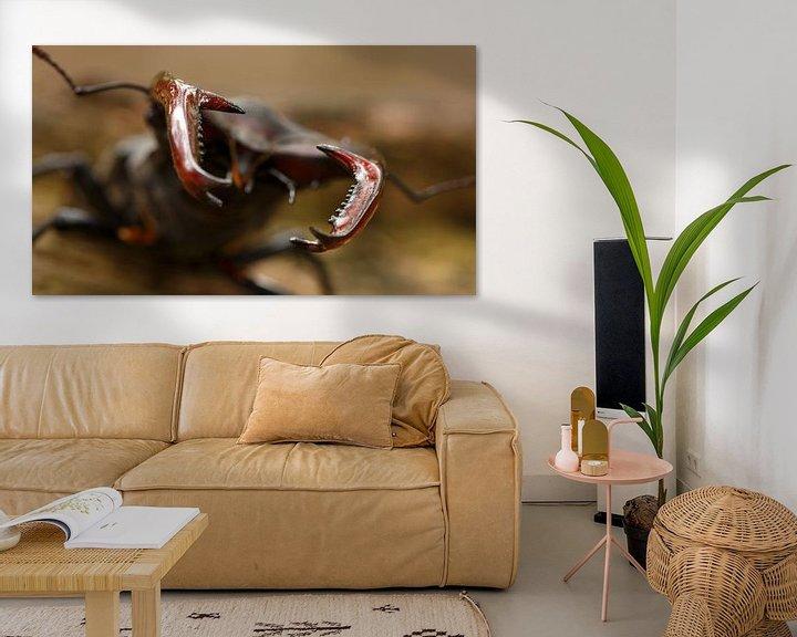 Sfeerimpressie: Het vliegend hert met z'n imposante kaken. van Paul Wendels