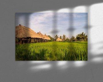 Rijstvelden bij Ubud, Bali (Indonesië) van Zero Ten Studio