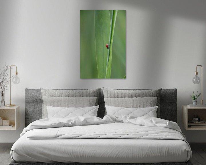 Sfeerimpressie: Lieveheersbeestje van Yana Koolen