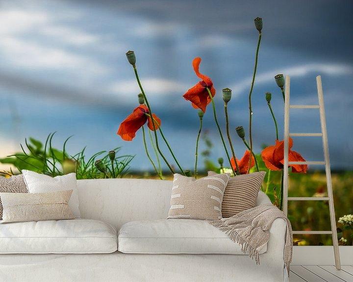 Beispiel fototapete: Wildblumen von Martijn Tilroe
