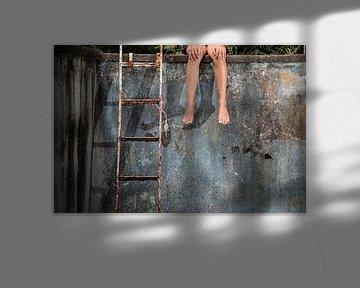 World without water 1 van Wim Roebroek
