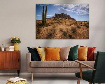 Abergläubische Saguaro-Kakteen von Joris Pannemans - Loris Photography