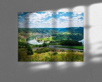 Rivierlus in het landschap van Mustafa Kurnaz