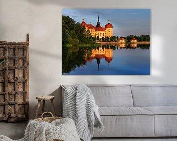 Château de Moritzburg (Saxe)