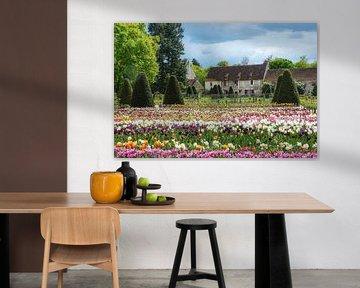 Bauernhof mit bunten Blumen im Garten von jacky weckx