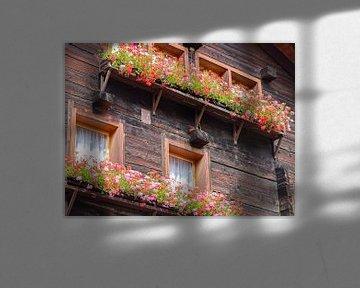 bunte Blumenkästen von Marieke Funke