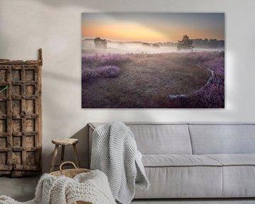 Nebliger Sonnenaufgang auf der Brunssummerheide von John van de Gazelle