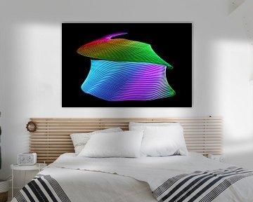 Abstraktes runde Gebilde aus farbiger Lichtmalerei vor schwarzem Hintergrundlack background von Hans-Jürgen Janda