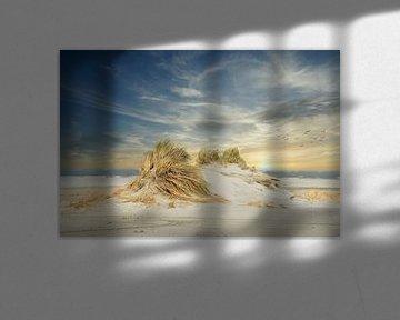 Nieuwe duinvorming op het strand van Ameland. van Gert van Santen