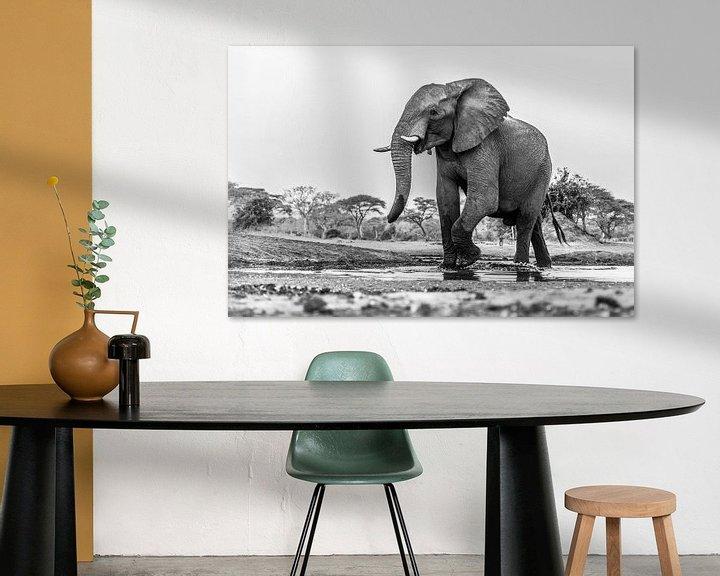 Sfeerimpressie: Portret Afrikaanse olifant (Loxodonta) bij een drinkwaterpoel van Remco Donners