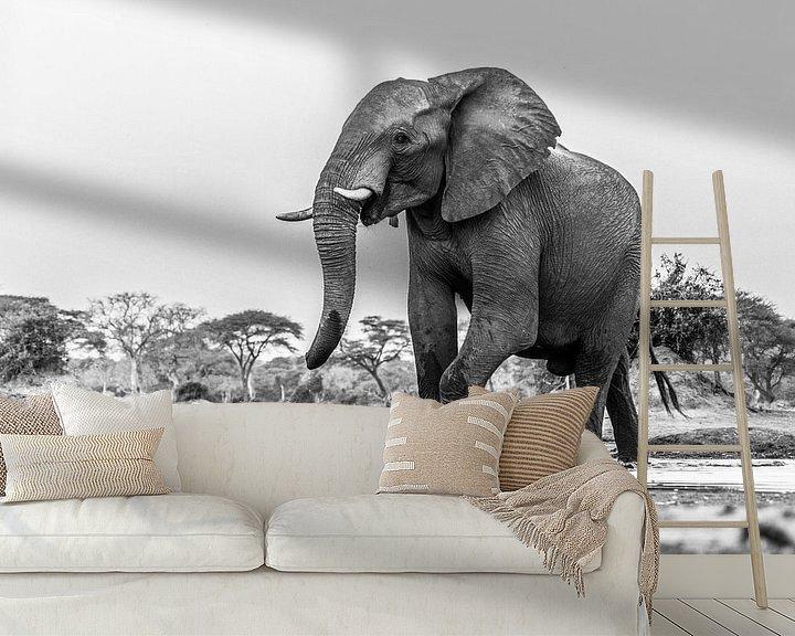 Sfeerimpressie behang: Portret Afrikaanse olifant (Loxodonta) bij een drinkwaterpoel van Remco Donners