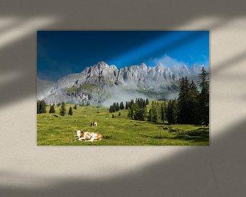 Berglandschap Oostenrijk