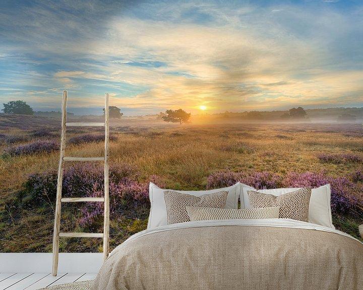 Beispiel fototapete: Sonnenaufgang in der Westruper Heide von Michael Valjak