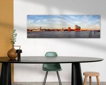 Hafenpanorama Hamburg von Dirk Rüter