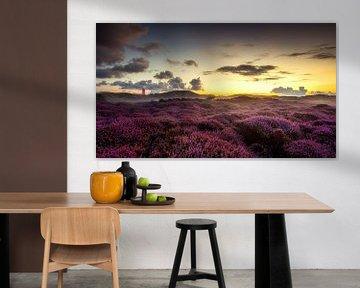 Zonsopkomst op Texel van Rob Sprenger