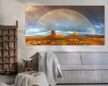 Regenboog boven Monument Valley van Reismaatjes XXL