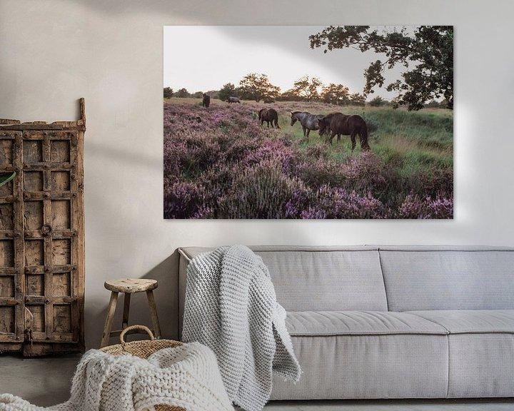 Impression: Chevaux sauvages dans la réserve naturelle de Kampina sur Carla Van Iersel