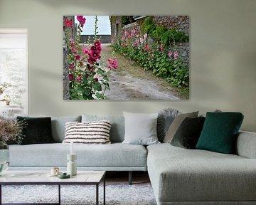 Steinpilze in französischer Gasse von 7Horses Photography