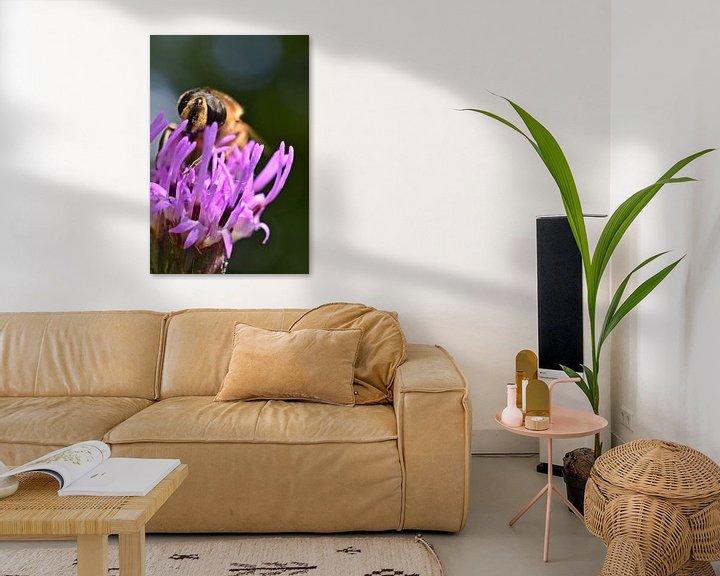 Beispiel: Makro einer Biene von Daphne van der straaten