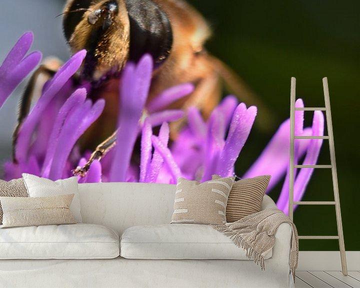 Beispiel fototapete: Makro einer Biene von Daphne van der straaten