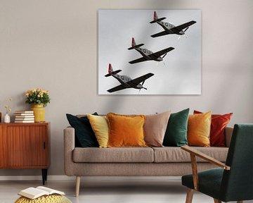Vliegtuig van jacky weckx