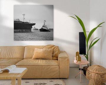 Sleepboot in actie op het Noordzeekanaal. van scheepskijkerhavenfotografie