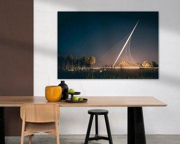 Komeet Neowise vanuit Nederland van Leon Weggelaar