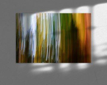 Bos, abstract