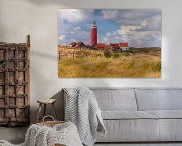 Lighthouse on Texel Holland van Brian Morgan