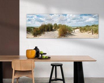 Panoramabeeld van de duinen en de Noordzee van eric van der eijk