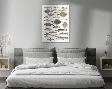 Fish van Jasper de Ruiter