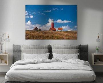 Texel Landschap