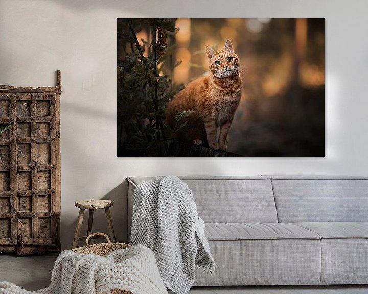 Beispiel: Rote Katze im Wald mit schönen orangefarbenen Farben von Lotte van Alderen
