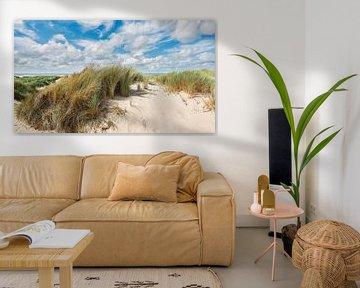 Een zomers beeld van het duin het strand en de Noordzee van eric van der eijk