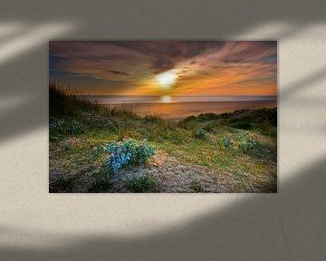 Baubigny strand