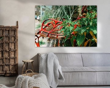 Rote Blumenbank von Lisanne Koopmans